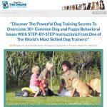 Daniel Abdelnoor Doggy Dan's Online Dog Trainer Review And Buyer's Guide