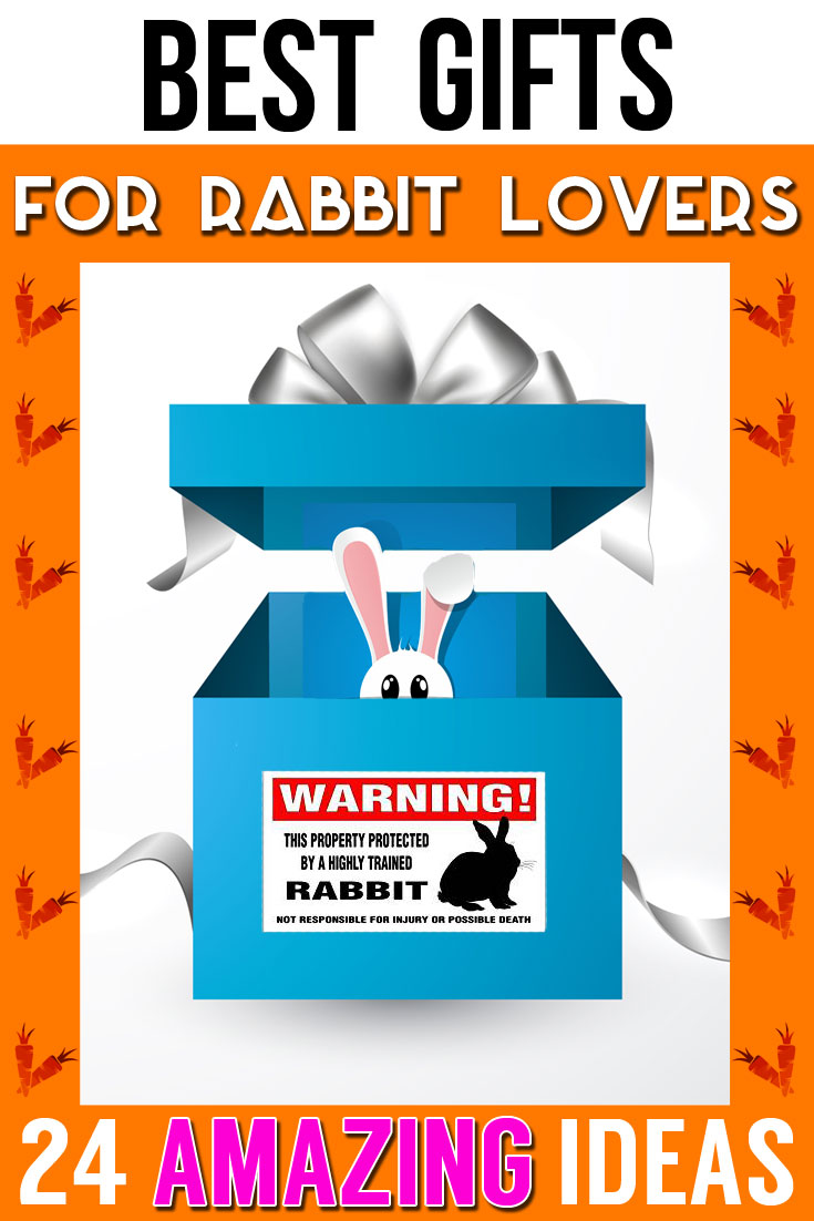 Best Unique Gifts For Rabbit Lovers
