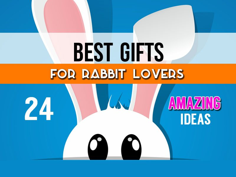 Unique Gifts For Rabbit Lovers - 24 Of The Best Gift Ideas For Bunny Lovers & Owners